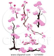 clipart of branches and pink cherry blossom designs royalty free
