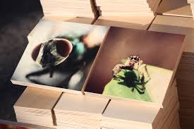 wood print pictures on wood wood print prints on wood