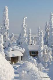 73 winter images