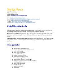 Online Marketing Resume by Marilyn Moran Digital Marketing Resume July 2015