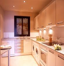 Kitchen Design Galley Layout Kitchen Design Commitment Small Kitchen Designs Small Kitchen