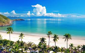 russian beaches enjoy holidays in 5 awesome beaches in southern vietnam