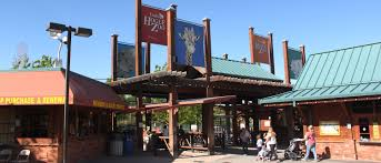 Zoo Lights Salt Lake City by What To See U0026 Do Utah U0027s Hogle Zoo