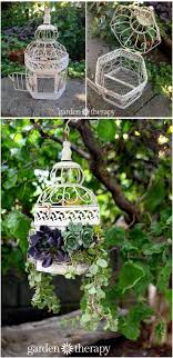 Succulent Gardens Ideas 15 Easy Diy Backyard Succulent Garden Ideas Style Motivation