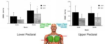 decline bench press muscles how to target the upper and lower chest pectorals sports