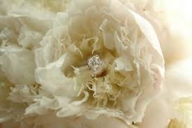 vow renewal wording wedding vow wording try these words as an alternative to u0027love