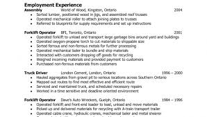 Job Qualifications Resume by Delivery Driver Resume
