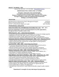 Senior Executive Cover Letter Cover Letter Executive Director Sample Resume Sample Resume For