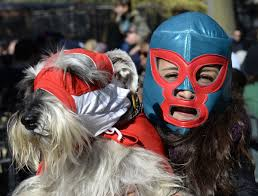 halloween dog mask dog halloween costume parade packs in pups in new york city