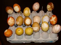 Coloring Eggs Naturally Coloring Eggs And Creating Flower And Leaf Patterns