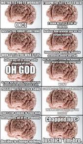 Scumbag Brain Meme - oh scumbag brain world wide interweb pinterest monday
