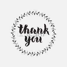 thank you vector written calligraphic lettering on white
