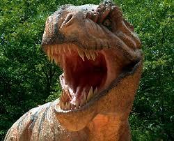 dinosaurs show true colours scientists