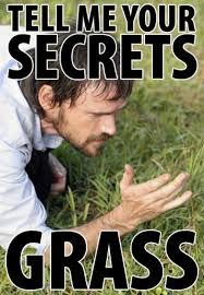 Secret Meme - tell me your secrets grass know your meme