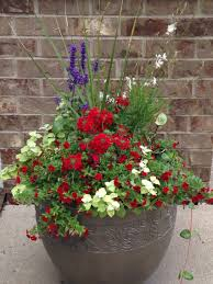 red white and blue planter container gardening pinterest