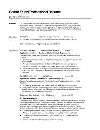 summary resume exles resume summary help matthewgates co