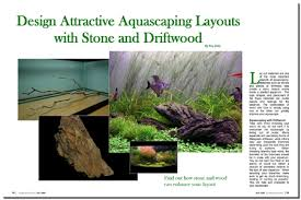 Aquascaping Layouts With Stone And Driftwood | aquascaping world magazine design attractive aquascaping layouts