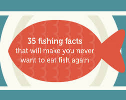 35 Things You Can Design - 35 facts that will make you never want to eat fish again inhabitat