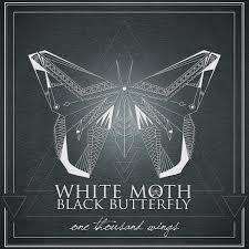 omen white moth black butterfly