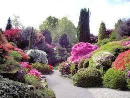 the rock garden leonardslee gardens leimenide flickr