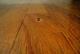 Squeaky Floor Repair Diy How Not To Fix A Squeaky Floor Rabit Stew Squeaky Floor Repair