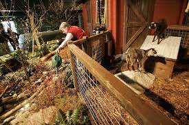 in its 30th year seattle garden show aims for a younger crowd