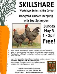 skillshare workshop series u2013 backyard chicken keeping chatham