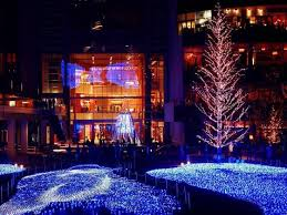 18 best outdoor christmas lighting images on pinterest front