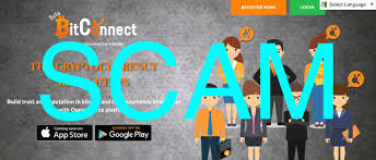 bitconnect good or bad bitconnect scam steemit