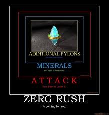 Zerg Rush Meme - 25 parasta ideaa pinterestiss磴 zerg rush oudot faktat