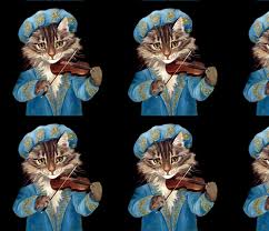 cats maine coon renaissance violins violinists music musicians