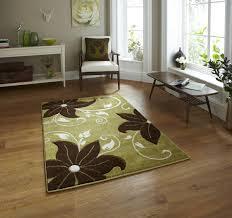 rugs olympus digital camera green brown rug captivating green