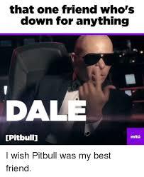 Pitbull Meme Dale - that one friend who s down for anything dale pitbullu mitu i wish