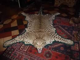 Leopard Cowhide Rug Leopard Hide Rug Roselawnlutheran