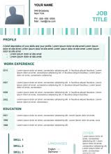 Attractive Resume Templates Curriculum Vitae Cv Resume Samples U0026 Resume Format