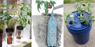self watering plants learn how to make your own self watering planters with these ideas