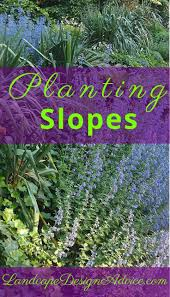 best 25 landscaping a slope ideas on pinterest sloped backyard