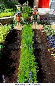 city vegetable gardening stock photos u0026 city vegetable gardening