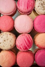 291 best macarons images on pinterest french macaroons french