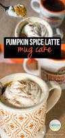 Amazing Mugs by 17 Best Images About Mug Cakes On Pinterest Chocolate Mug Cakes