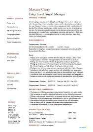 entry level cover letter entry level project manager resume junior business analysis areas