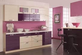 cuisine en violet aménagement cuisine violet vert