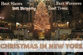 Christmas Tree Store Taylor Michigan - new york christmas best trees windows shopping and shows