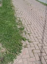 How To Cut Patio Pavers Without A Saw How To Make A Weed Free Brick Driveway That Stays That Way