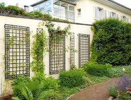 wrought iron trellis for beautiful look noz