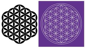 drawing flower of life how to draw the flower of life in adobe