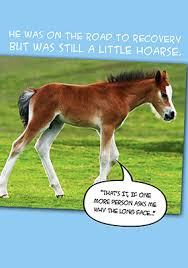 Soon Horse Meme - funny get well soon cards funky pigeon