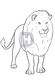 drawing realistic lion step step darkonator drawinghub