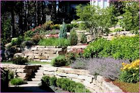 Small Sloped Backyard Ideas Landscaping Ideas For Backyards With Dogs Home Design Ideas