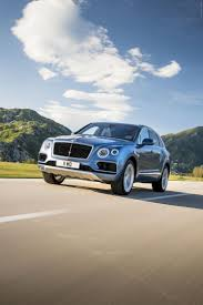 suv bentley 2016 the 25 best bentley 2016 ideas on pinterest bentley sport
